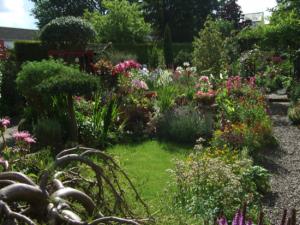 Garden Open Day 2017
